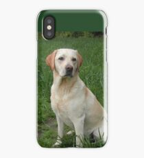 labrador retriever yellow sitting in grass iPhone Case