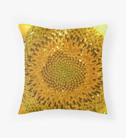My Sons Sunny Perspective Throw Pillow