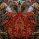 reflection by Soxy Fleming