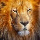 the king by Diana Calvario