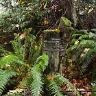 Remnant along the old Port Gamble - Suguamish Road - Near Port Gamble, Washington by Mark Heller