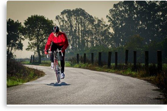Cyclist by homydesign