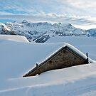 Snowed in Alpine barns by mamba