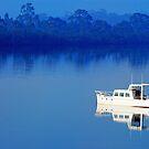 Huon River, Tasmania by Imi Koetz