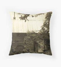 Converted Barn Throw Pillow