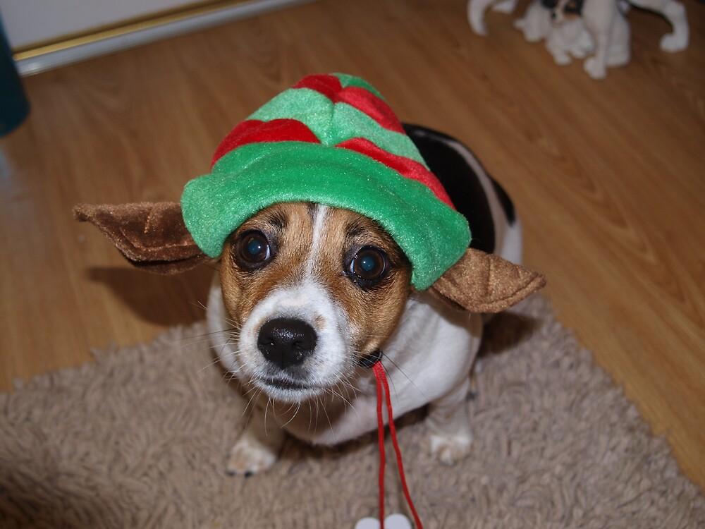 Santas Helper by Minxy