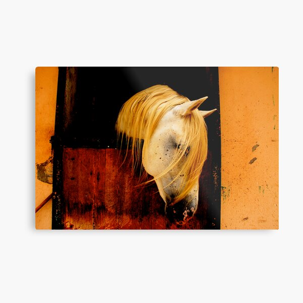 Ibero, a horse I met recently & deserved better Metal Print
