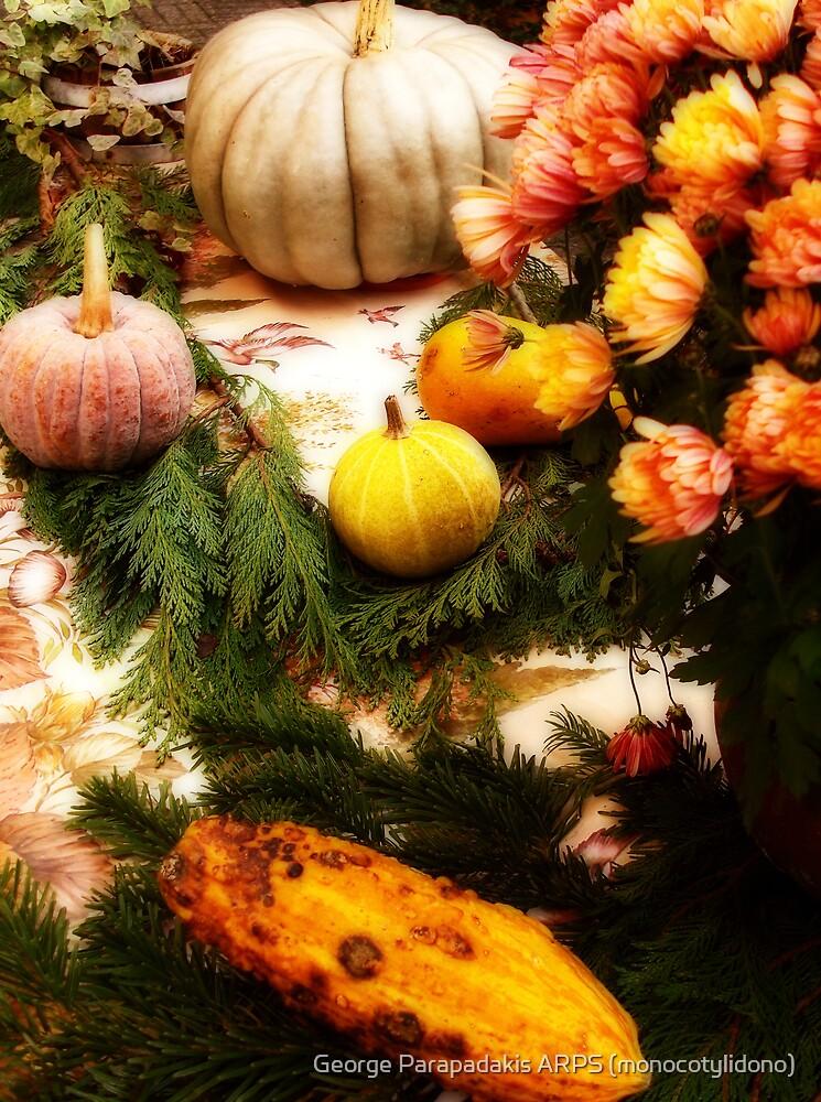 Thanksgiving Tableau by George Parapadakis (monocotylidono)