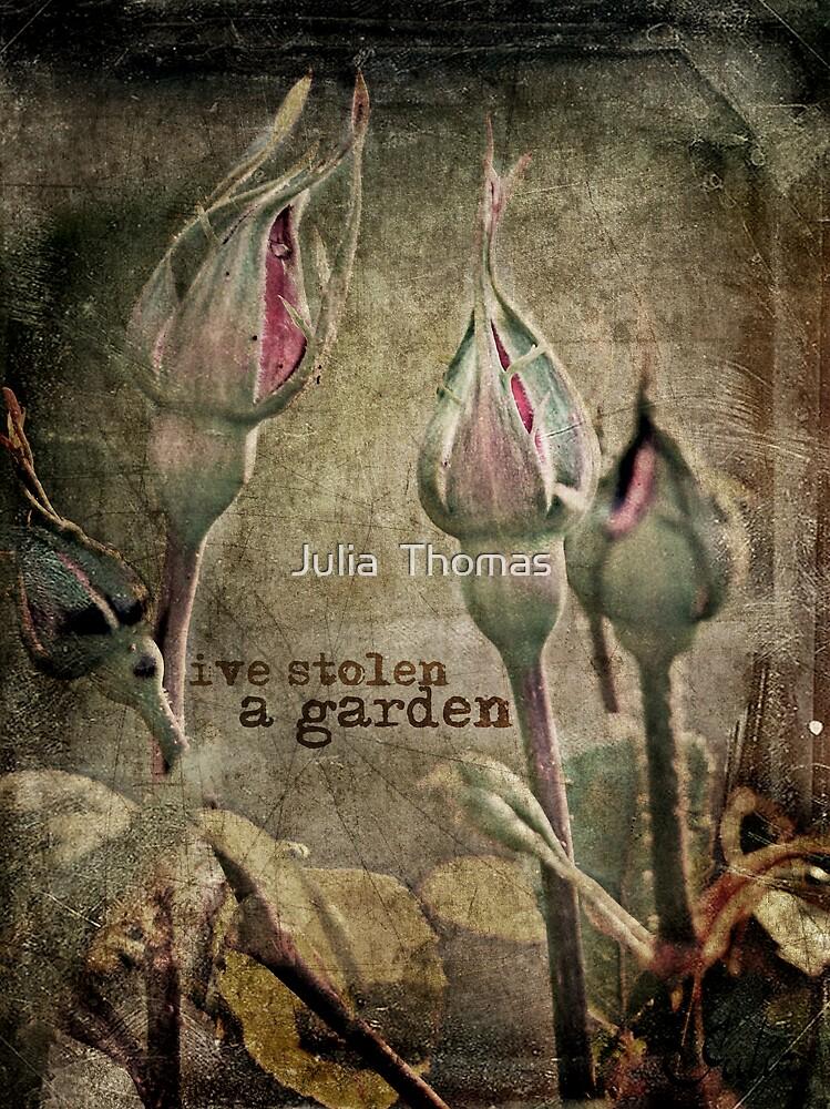 I've Stolen A Garden by Julia  Thomas