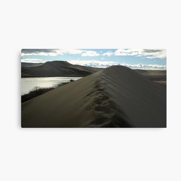 Traversing the tallest Dune Metal Print
