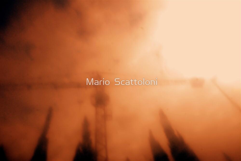 Crane & Trees by Mario  Scattoloni