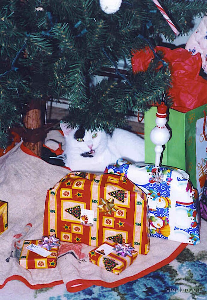 I got A Cat For Christmas by steelwagon