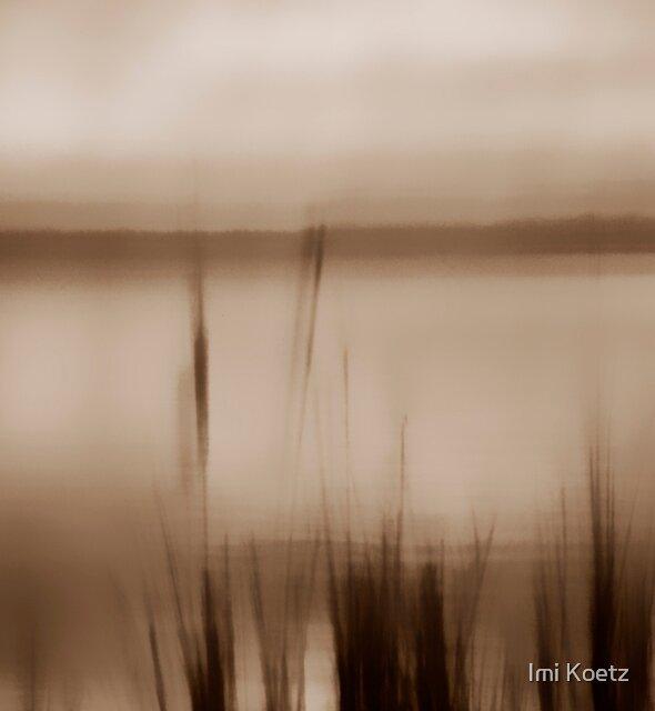 Artscape.........A Lake near Berlin....... by Imi Koetz