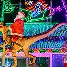 Christmas Lights 5 by Werner Padarin