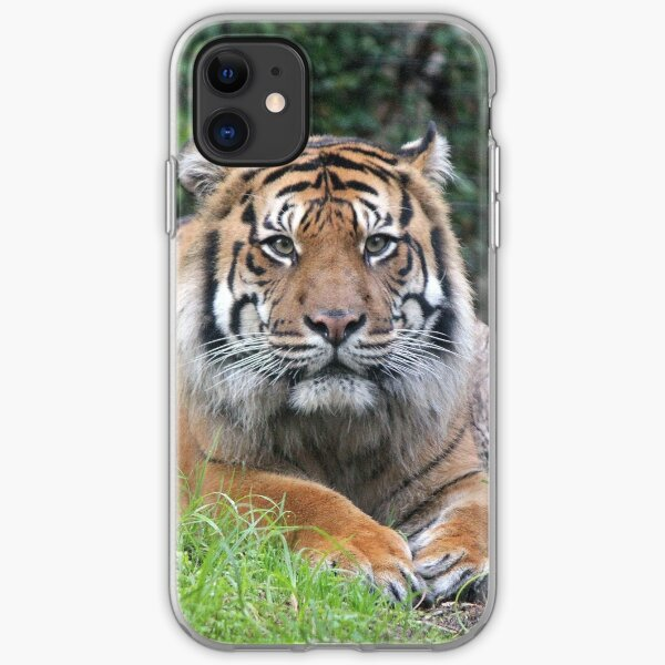 Waiting Patiently iPhone Soft Case