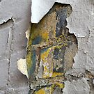 Peeling Paint 7 by rdshaw