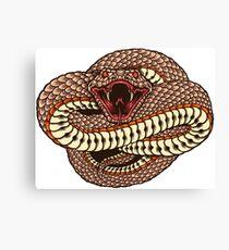 Snake spirit animal Canvas Print