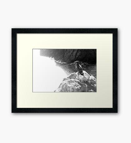 Crystal White Framed Print