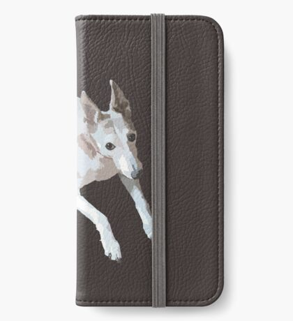 Devo iPhone Wallet