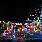Seasons Greetings Lights by Judi FitzPatrick