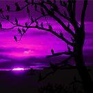 LAST LIGHT (in purple) by Lori Deiter