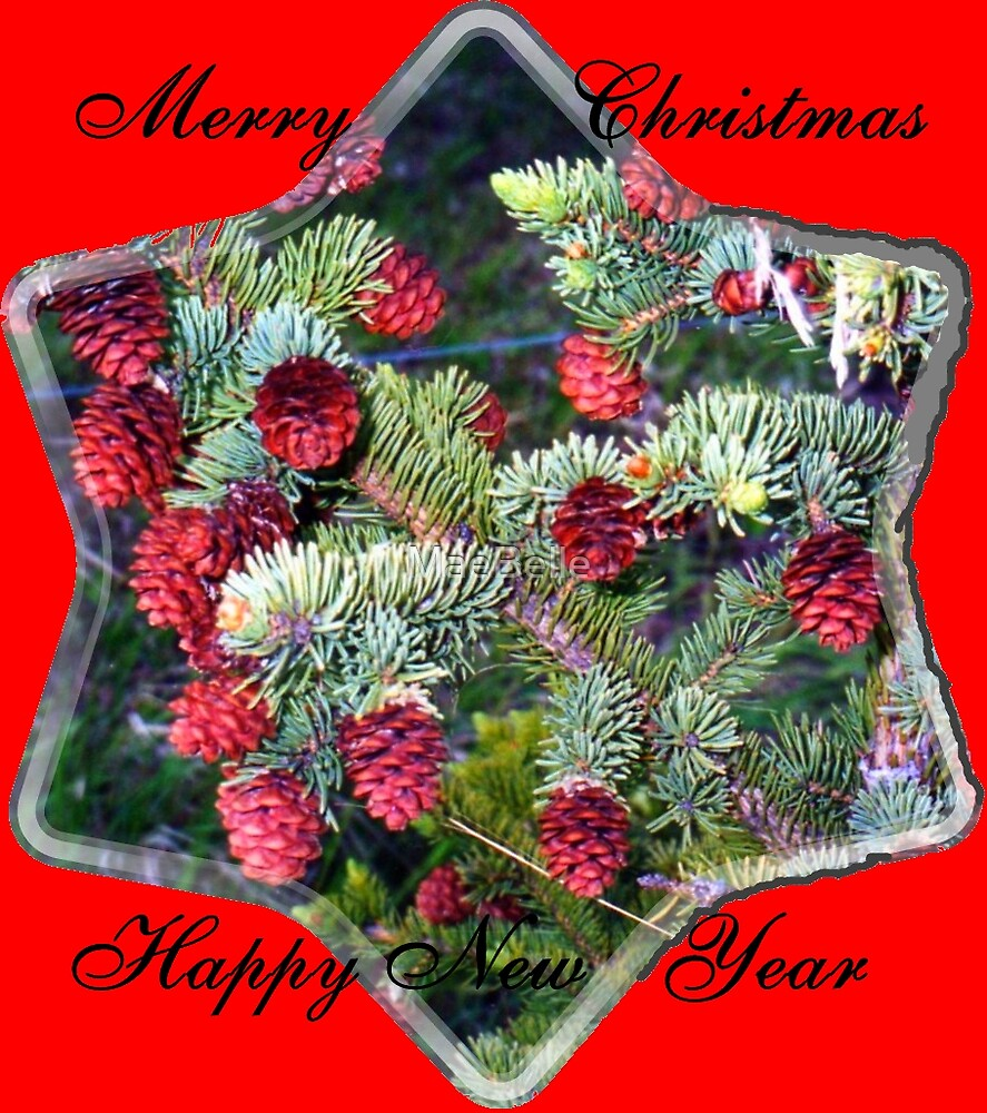Spruce Cone Christmas  Card by MaeBelle