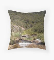 lesmurdie falls Throw Pillow