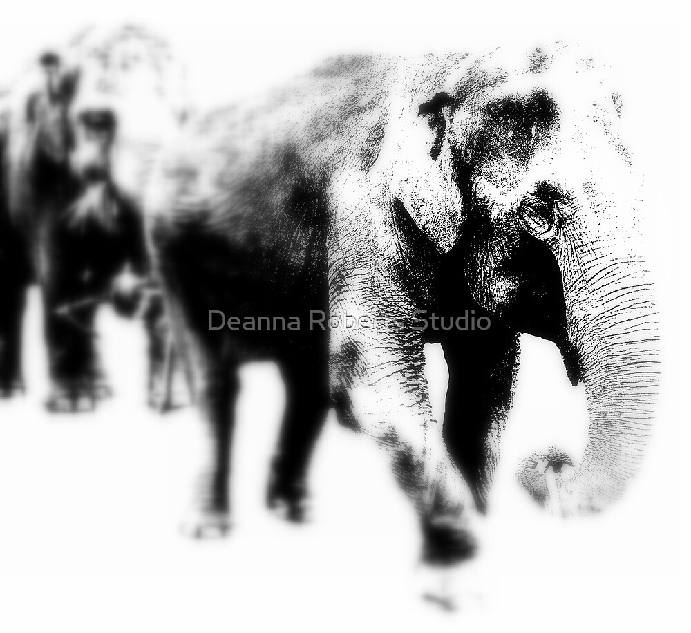 Elephants on Parade by Deanna Roberts Think in Pictures