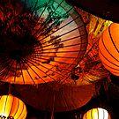 Tiger Lils Lanterns by Josh Prior
