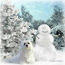 Snowdrop the Maltese & The Snowman by Morag Bates