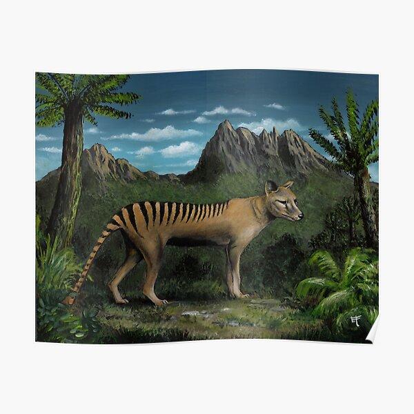 Tasmanian Tiger / Thylacine Poster