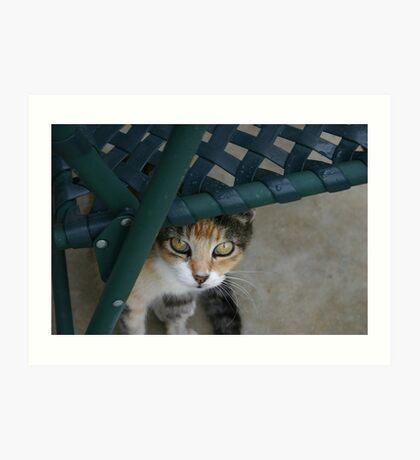Miss Kit Kat Art Print