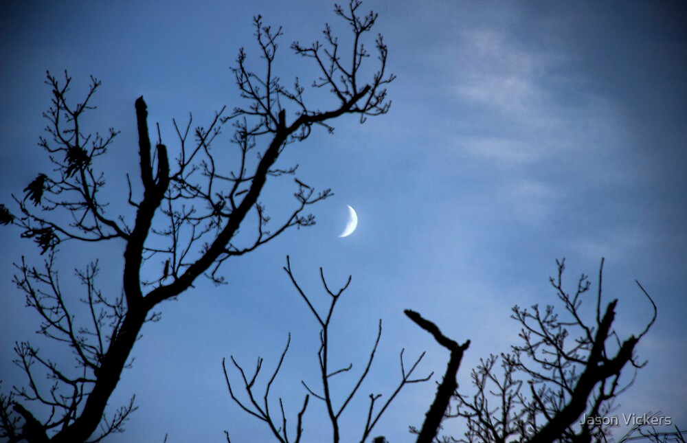 Waxing Crescent Moon by Jason Vickers