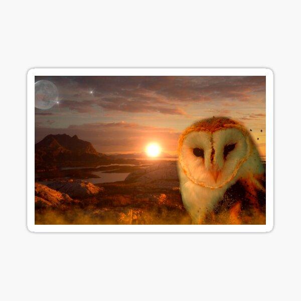 Owl soul Sticker