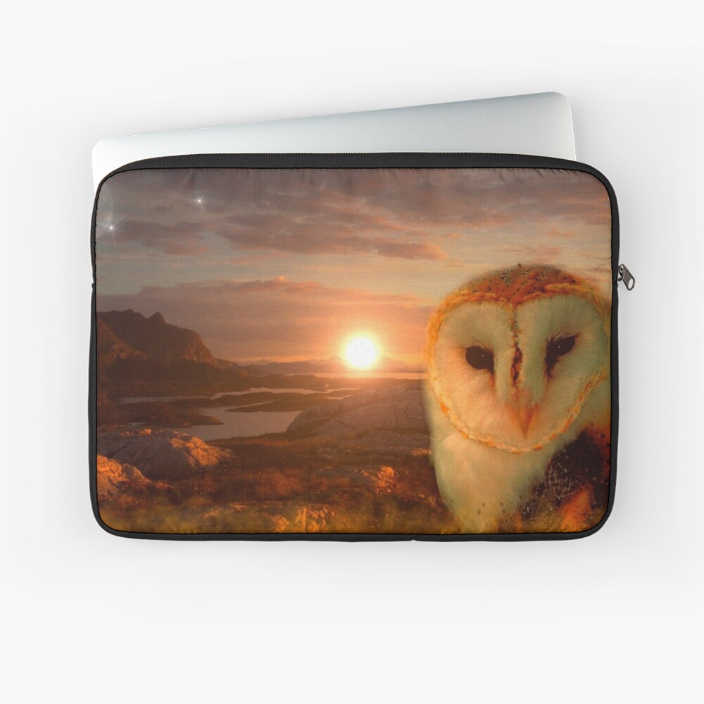 owls soul Laptop Sleeve