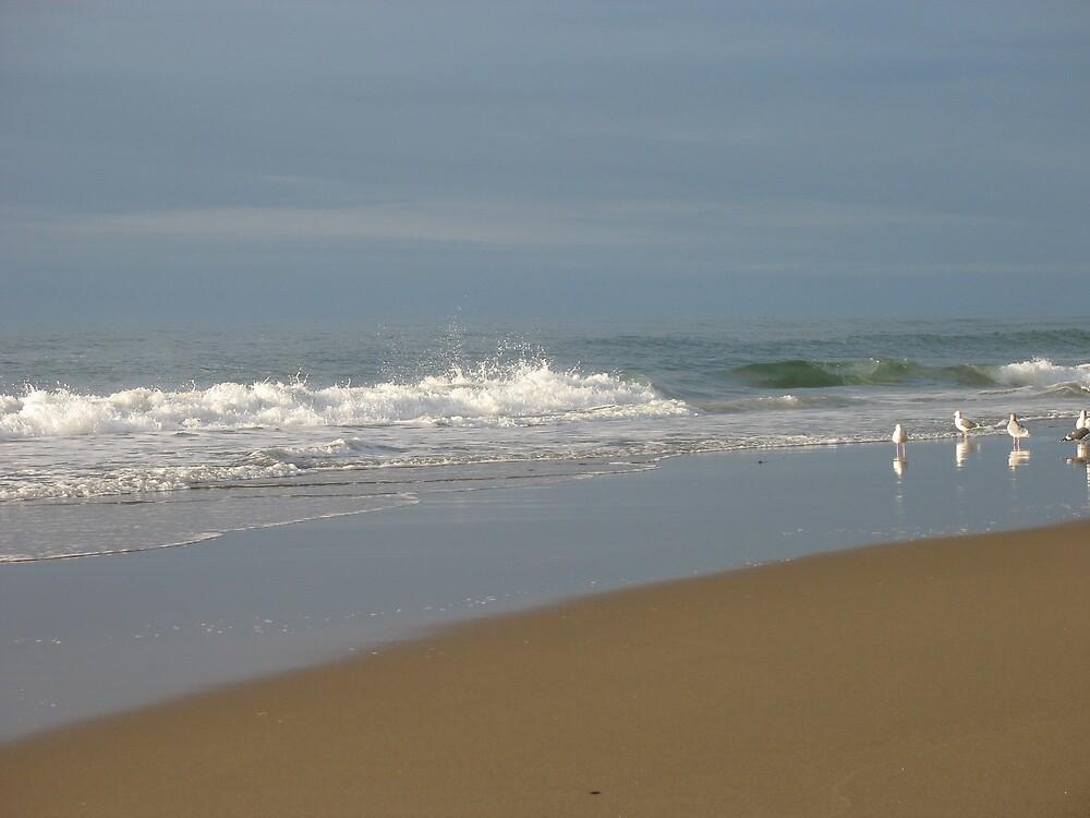 Oreon Beaches by Cheezweezl