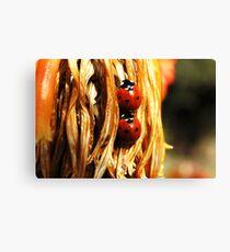 ladybugs Canvas Print