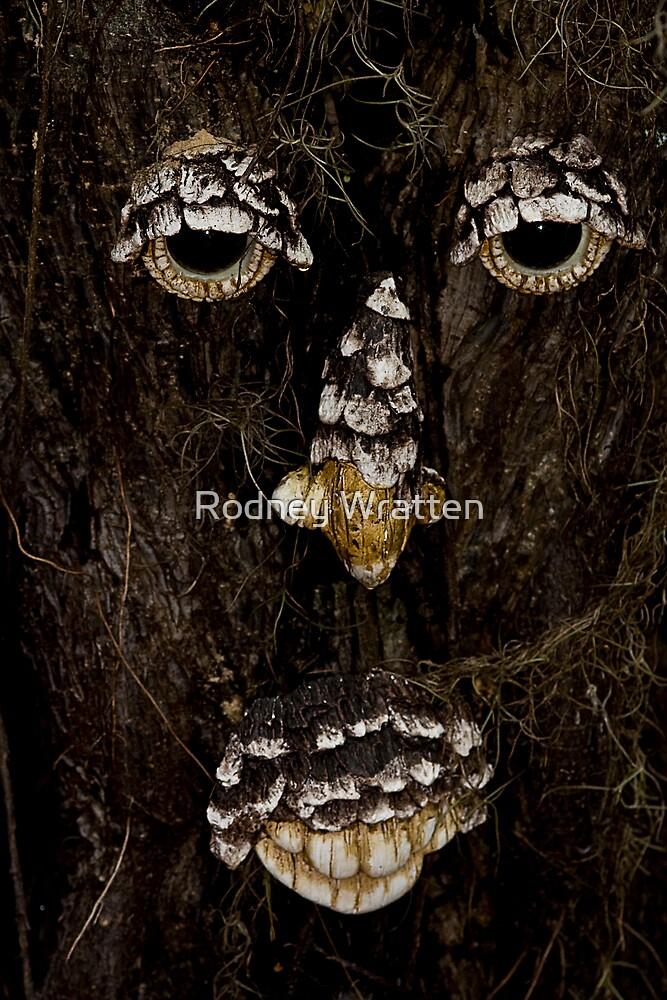 Face on a tree by Rodney Wratten