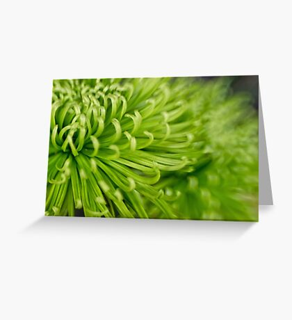 Autumn greens Greeting Card