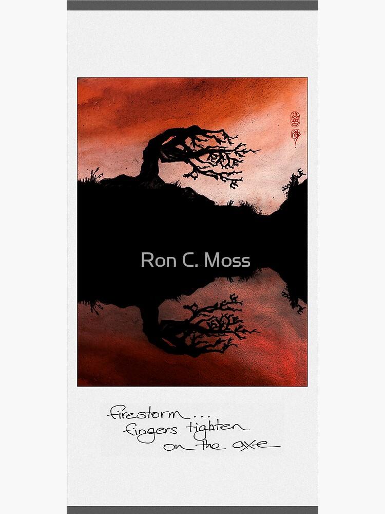 firestorm by ronmoss