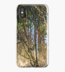 Painted In Reflection, Issaquah Creek iPhone Case/Skin