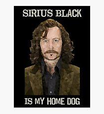 Sirius Black is My Home Dog Photographic Print