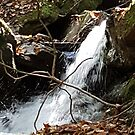 Waterfall near Falls Trail by JRobinWhitley