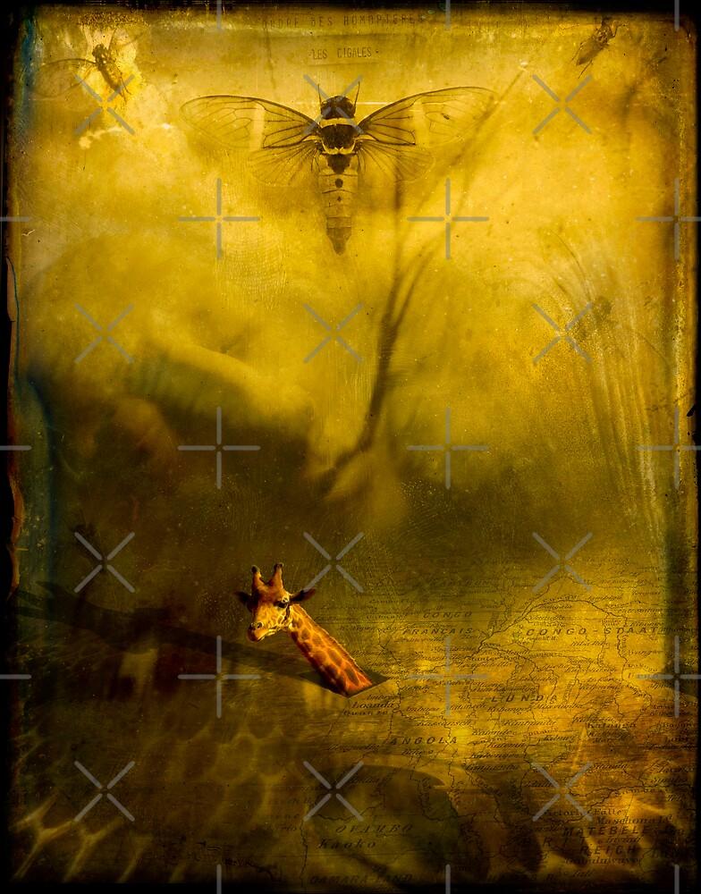 Heart of darkness by paulgrand