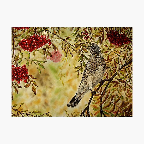 """""""Fieldfare"""" - Oil Painting Photographic Print"""