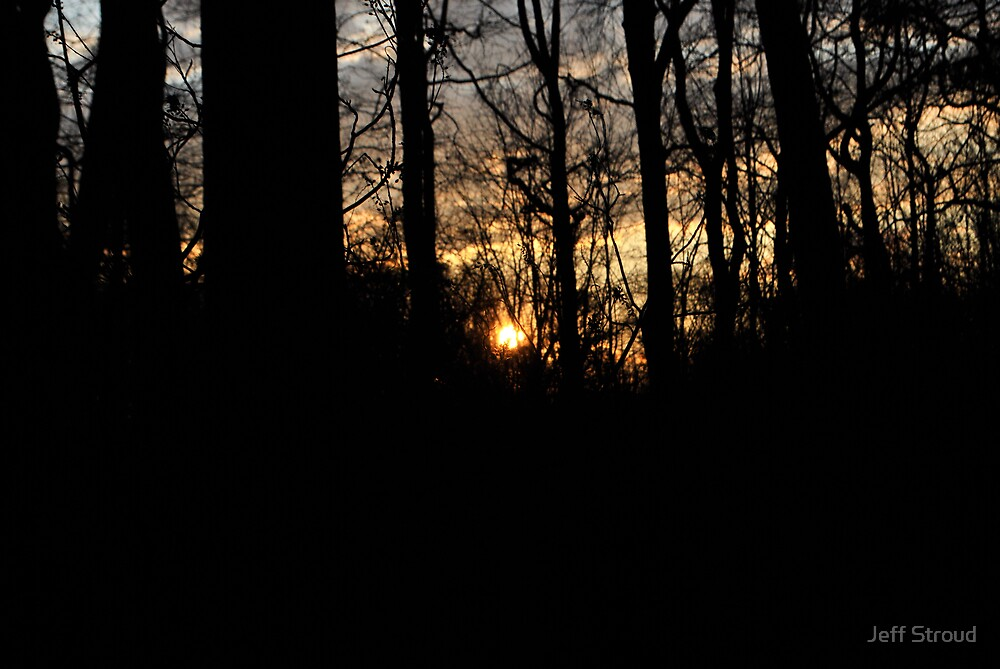sunset in the woods by Jeff stroud