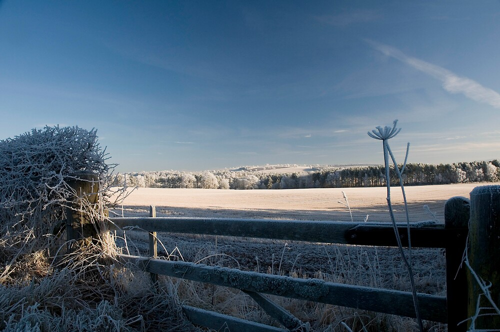 frosty gate 2 by duncananderson