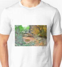 Ash Cave Hocking Hills Ohio Unisex T-Shirt