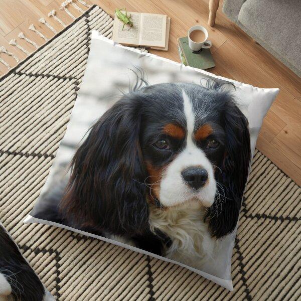 cavalier king charles spaniel second Floor Pillow