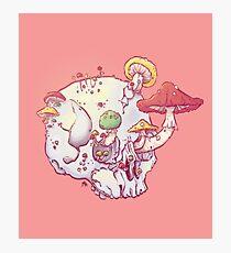 Skull No.1 // The Mushrooms One Photographic Print